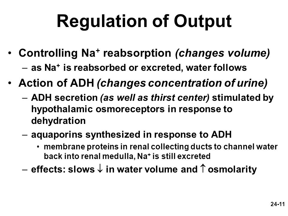 Regulation of Output Controlling Na+ reabsorption (changes volume)