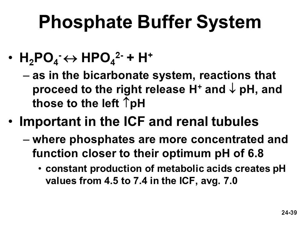 Phosphate Buffer System