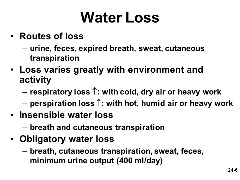 Water Loss Routes of loss
