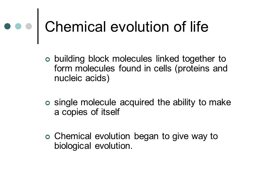 Chemical evolution of life