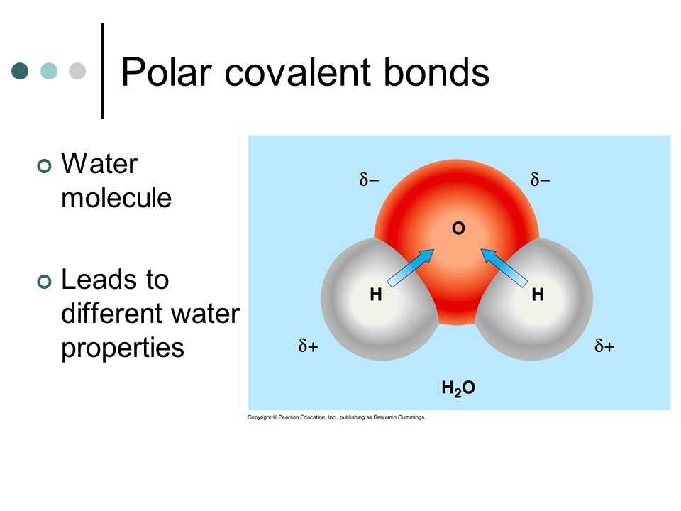 Polar covalent bonds Water molecule
