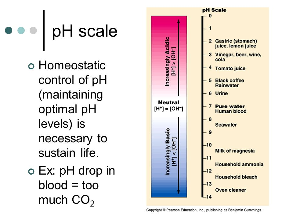 pH scaleHomeostatic control of pH (maintaining optimal pH levels) is necessary to sustain life.