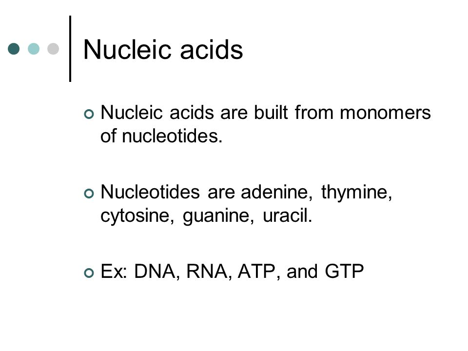 Nucleic acids Nucleic acids are built from monomers of nucleotides.