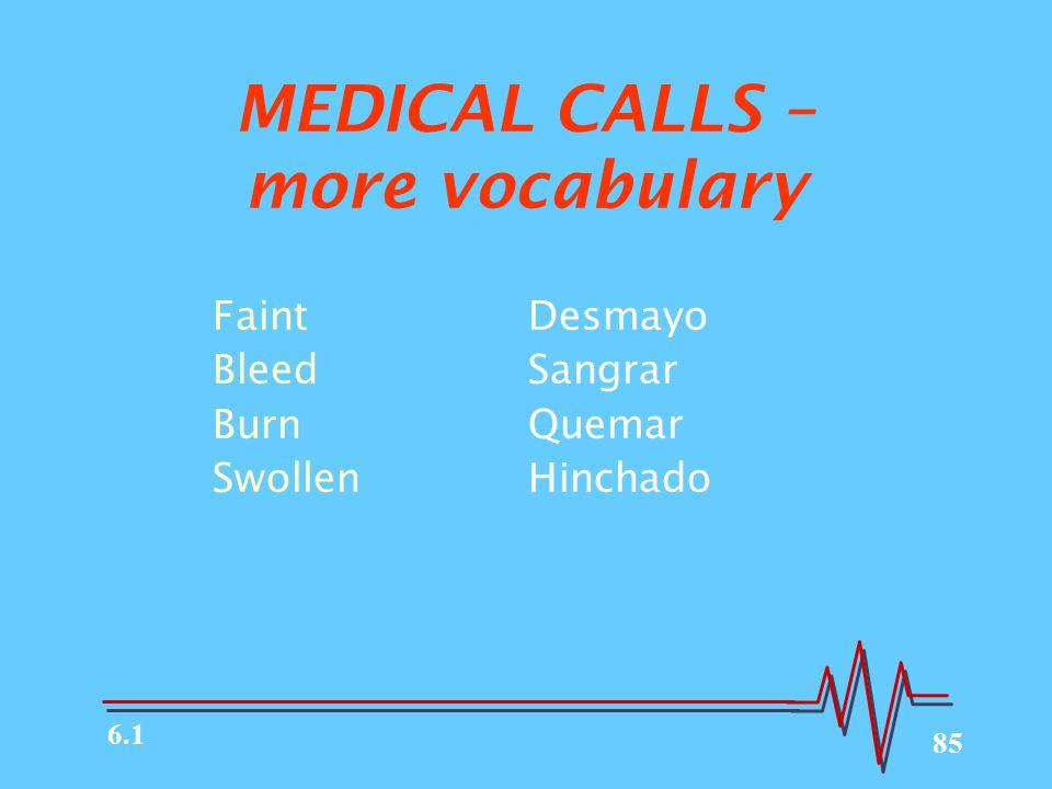 MEDICAL CALLS – more vocabulary