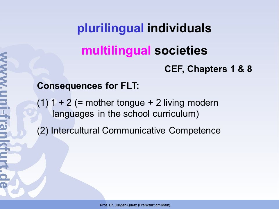 plurilingual individuals multilingual societies