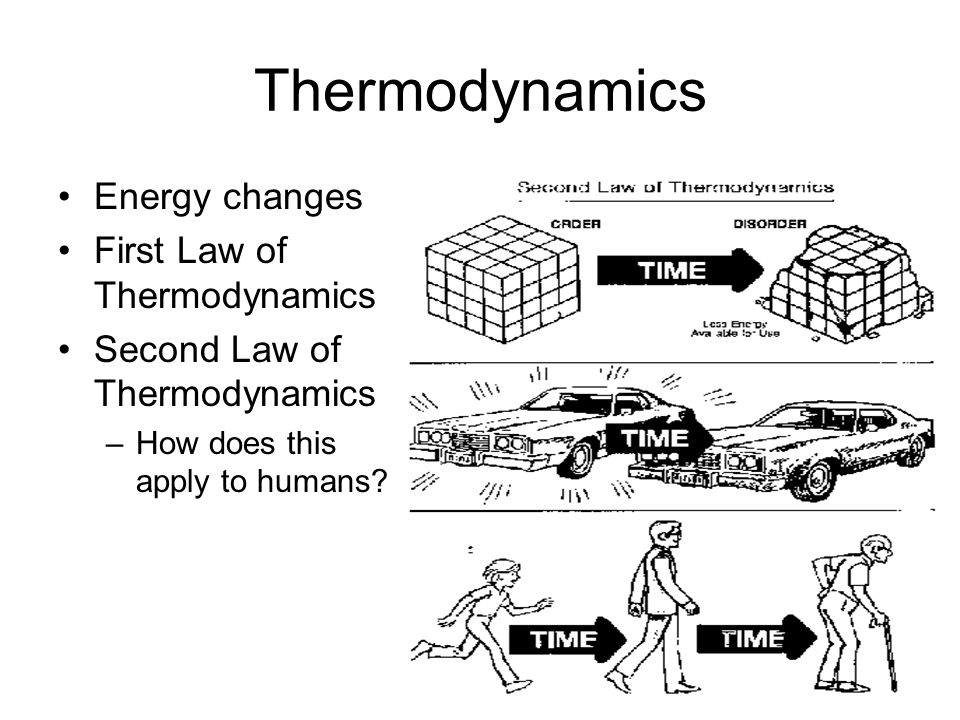 Thermodynamics Energy changes First Law of Thermodynamics