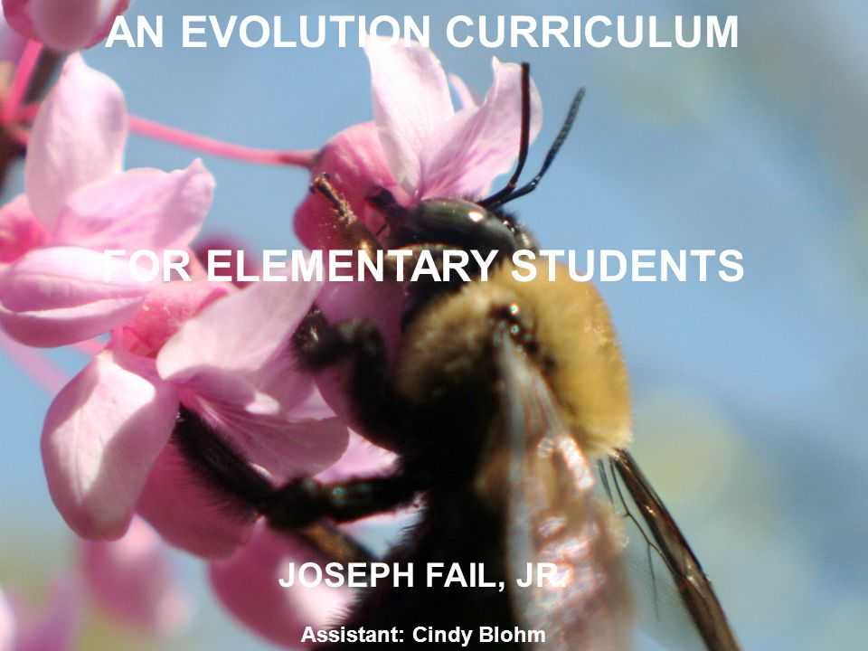 AN EVOLUTION CURRICULUM FOR ELEMENTARY STUDENTS