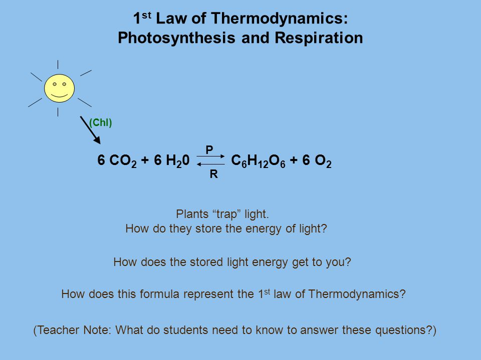 1st Law of Thermodynamics: Photosynthesis and Respiration