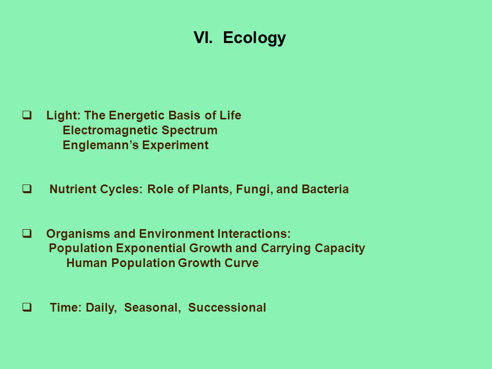 VI. Ecology Light: The Energetic Basis of Life
