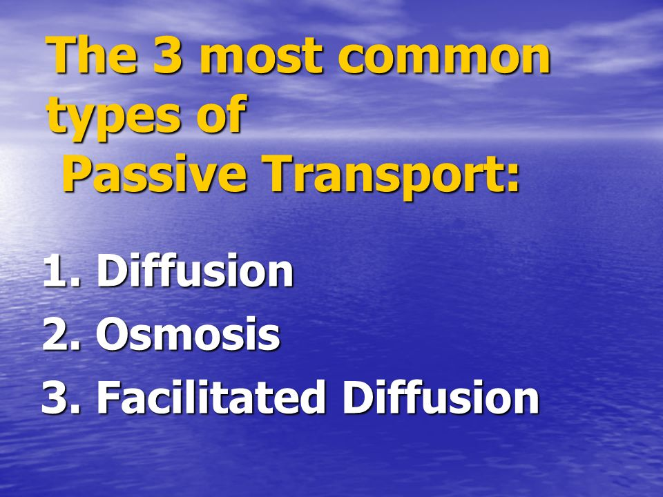 The 3 most common types of Passive Transport: