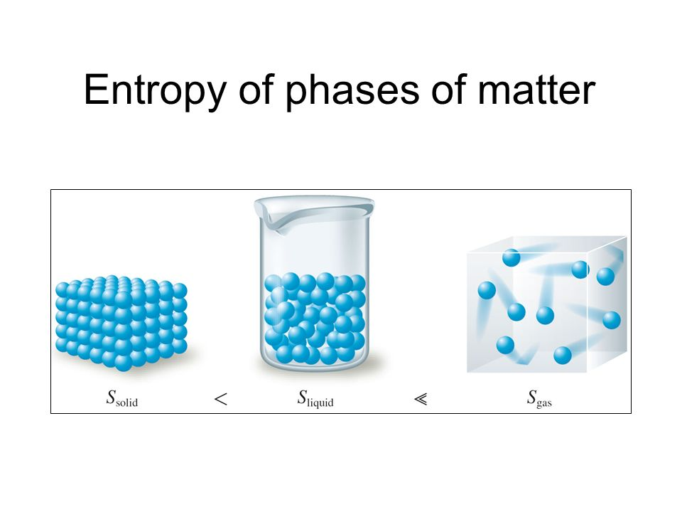Entropy of phases of matter