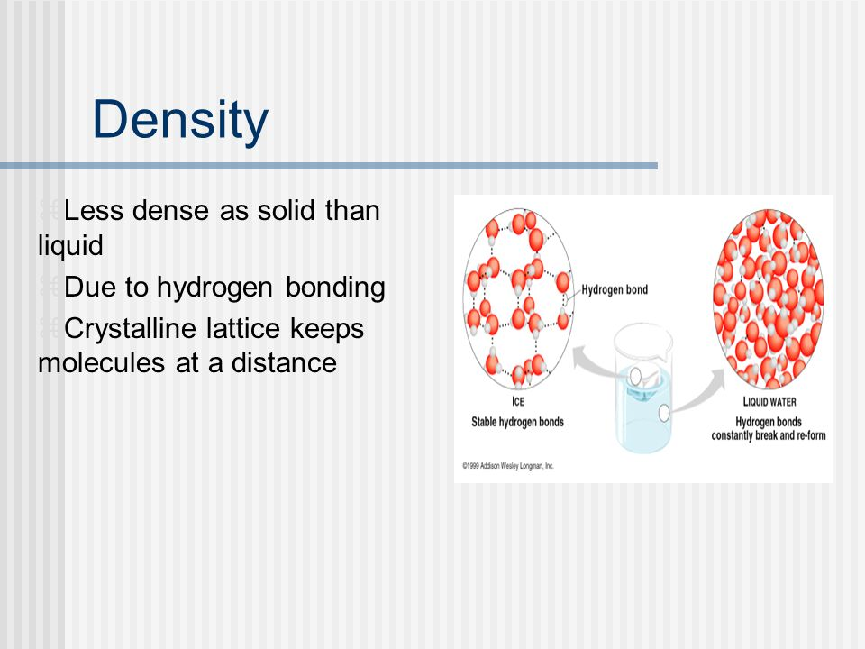 Density Less dense as solid than liquid Due to hydrogen bonding