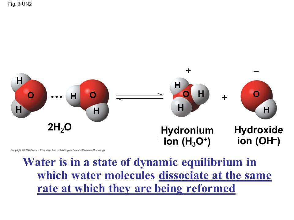 Fig. 3-UN2 H. H. O. H. O. O. H. O. H. H. H. H. 2H2O. Hydronium. ion (H3O+) Hydroxide.