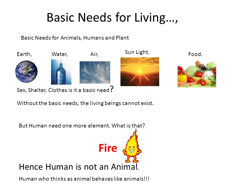Basic Needs for Living…,
