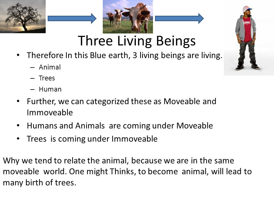 Three Living Beings Therefore In this Blue earth, 3 living beings are living. Animal. Trees. Human.