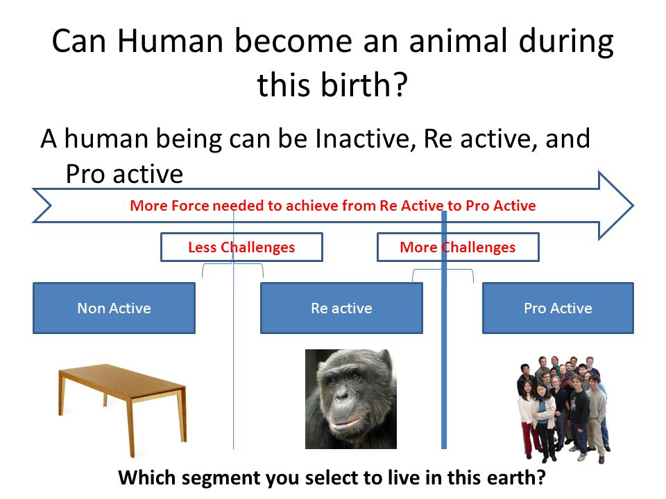 Can Human become an animal during this birth