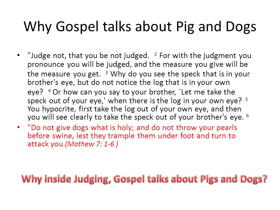 Why Gospel talks about Pig and Dogs
