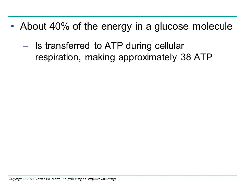 About 40% of the energy in a glucose molecule