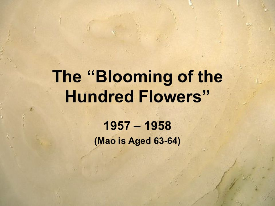 The Blooming of the Hundred Flowers