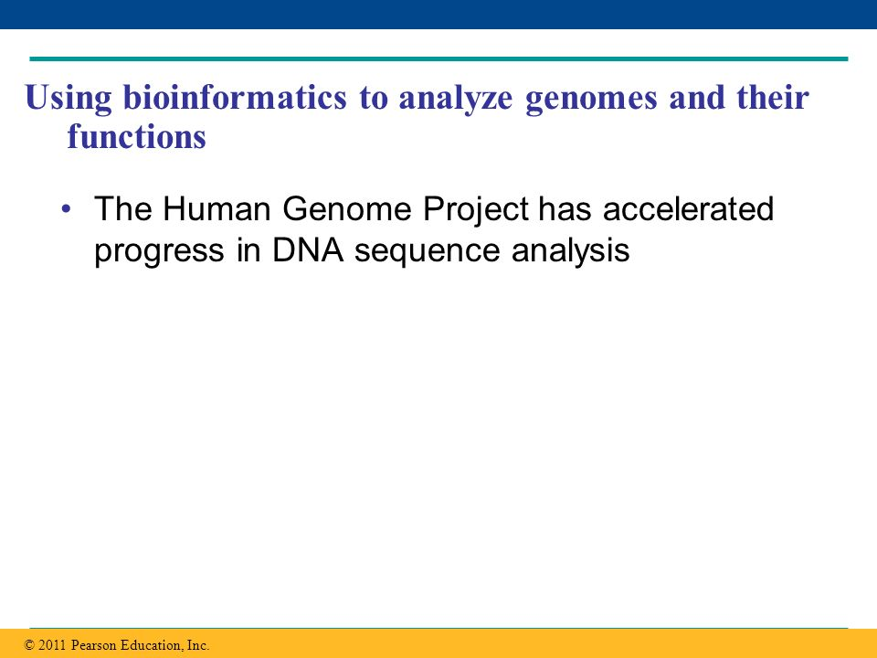 Using bioinformatics to analyze genomes and their functions