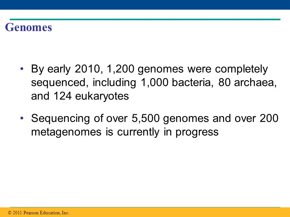 Genomes By early 2010, 1,200 genomes were completely sequenced, including 1,000 bacteria, 80 archaea, and 124 eukaryotes.