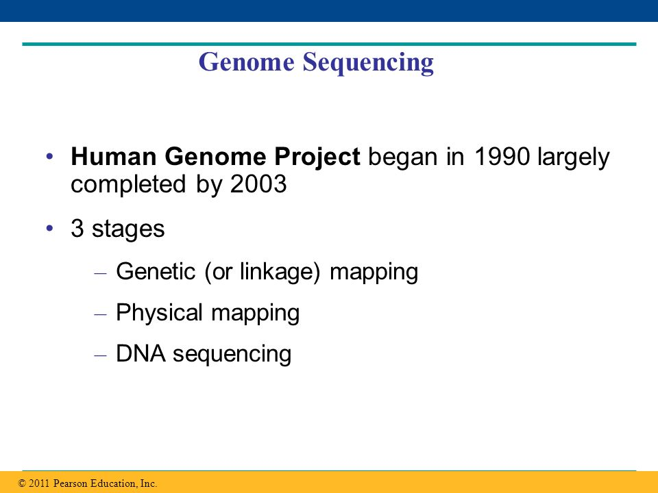 Genome Sequencing Human Genome Project began in 1990 largely completed by 2003. 3 stages. Genetic (or linkage) mapping.
