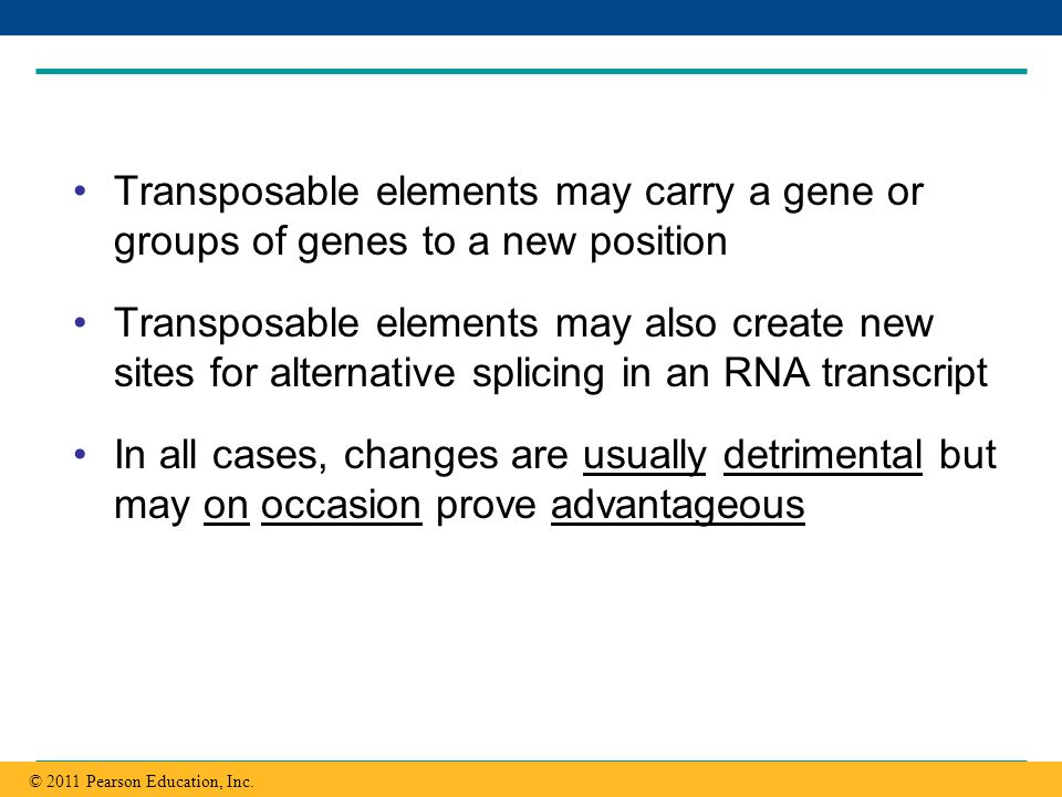 Transposable elements may carry a gene or groups of genes to a new position
