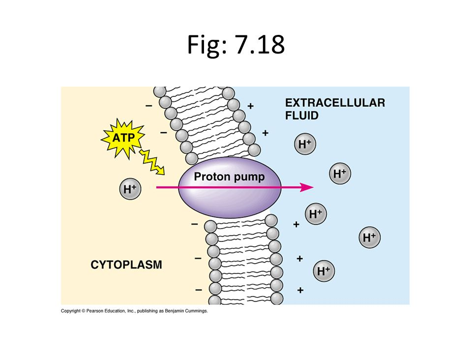 Fig: 7.18