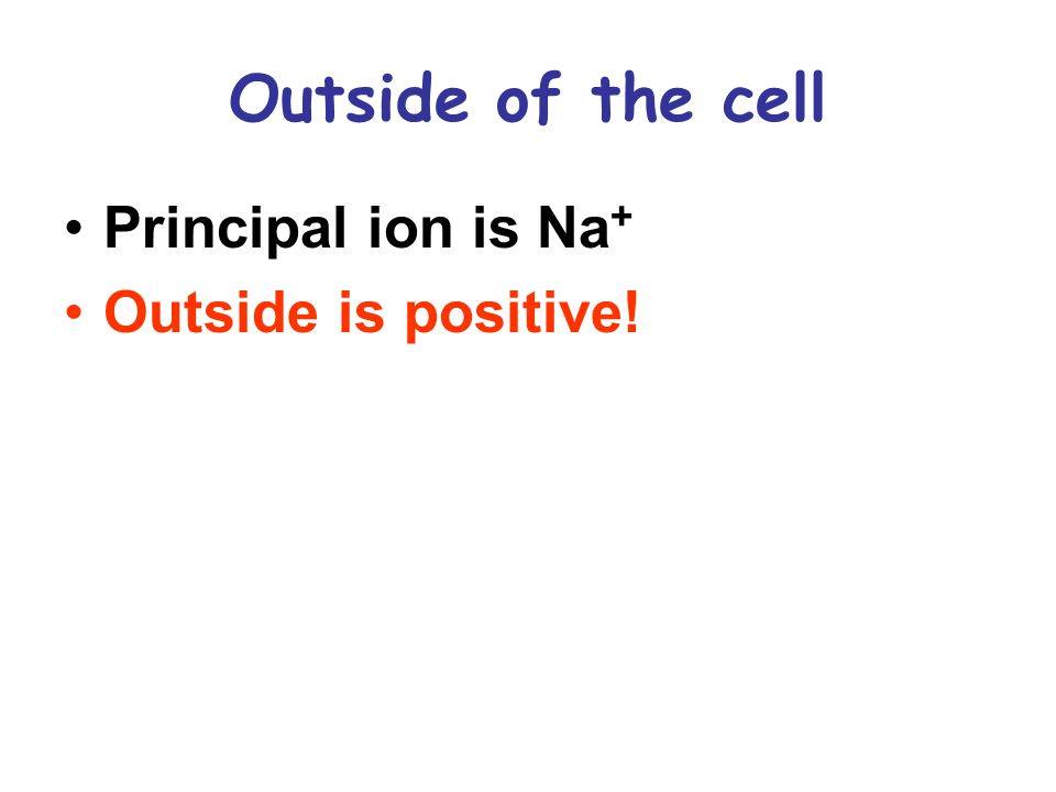 Outside of the cell Principal ion is Na+ Outside is positive!