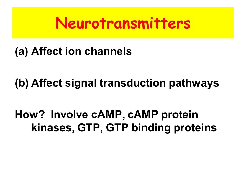 Neurotransmitters Affect ion channels