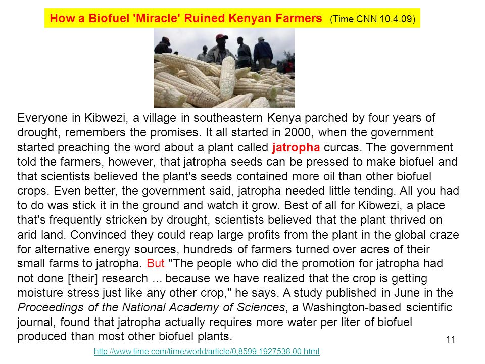 How a Biofuel Miracle Ruined Kenyan Farmers (Time CNN 10.4.09)