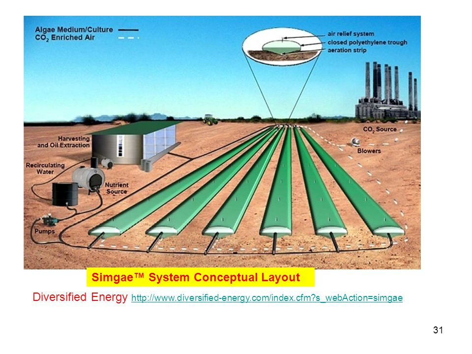 Simgae™ System Conceptual Layout