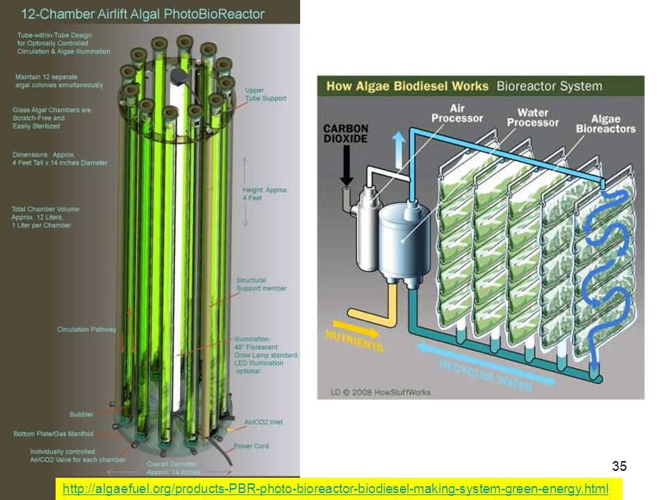 http://algaefuel.org/products-PBR-photo-bioreactor-biodiesel-making-system-green-energy.html