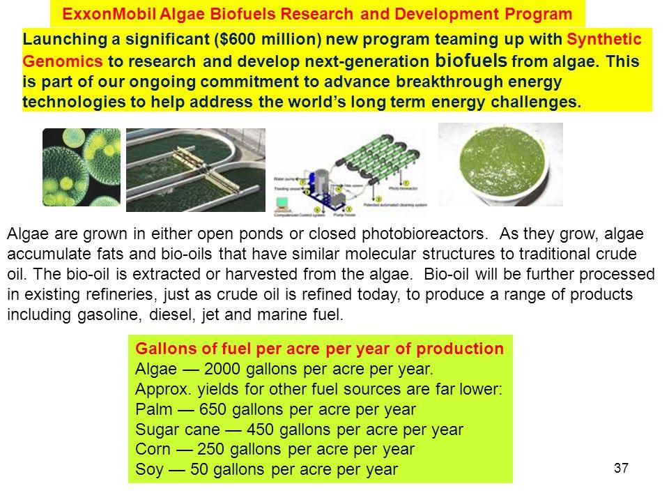 ExxonMobil Algae Biofuels Research and Development Program