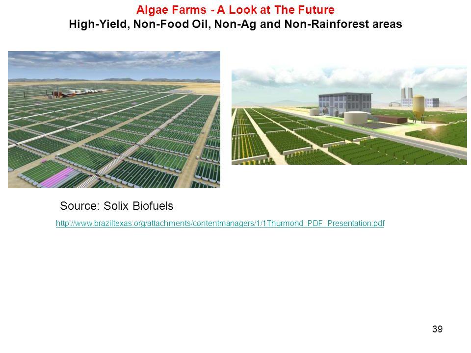 Algae Farms - A Look at The Future