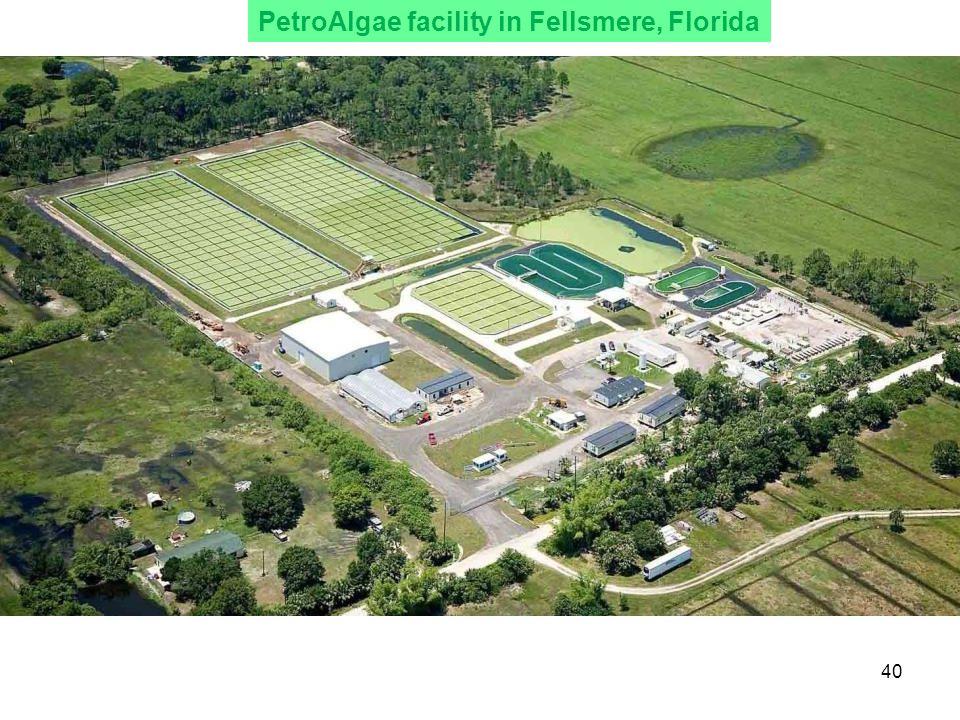 PetroAlgae facility in Fellsmere, Florida