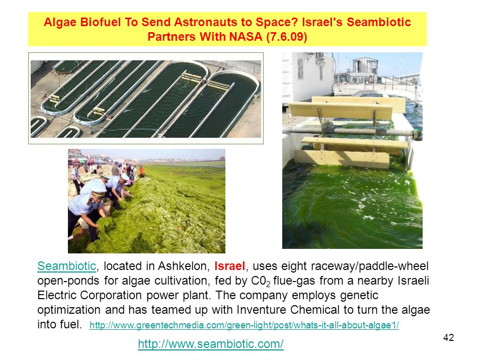 Algae Biofuel To Send Astronauts to Space