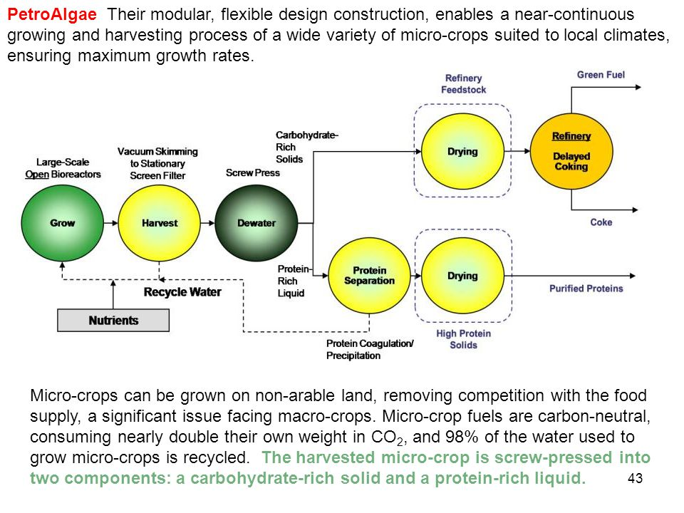 PetroAlgae Their modular, flexible design construction, enables a near-continuous growing and harvesting process of a wide variety of micro-crops suited to local climates, ensuring maximum growth rates.