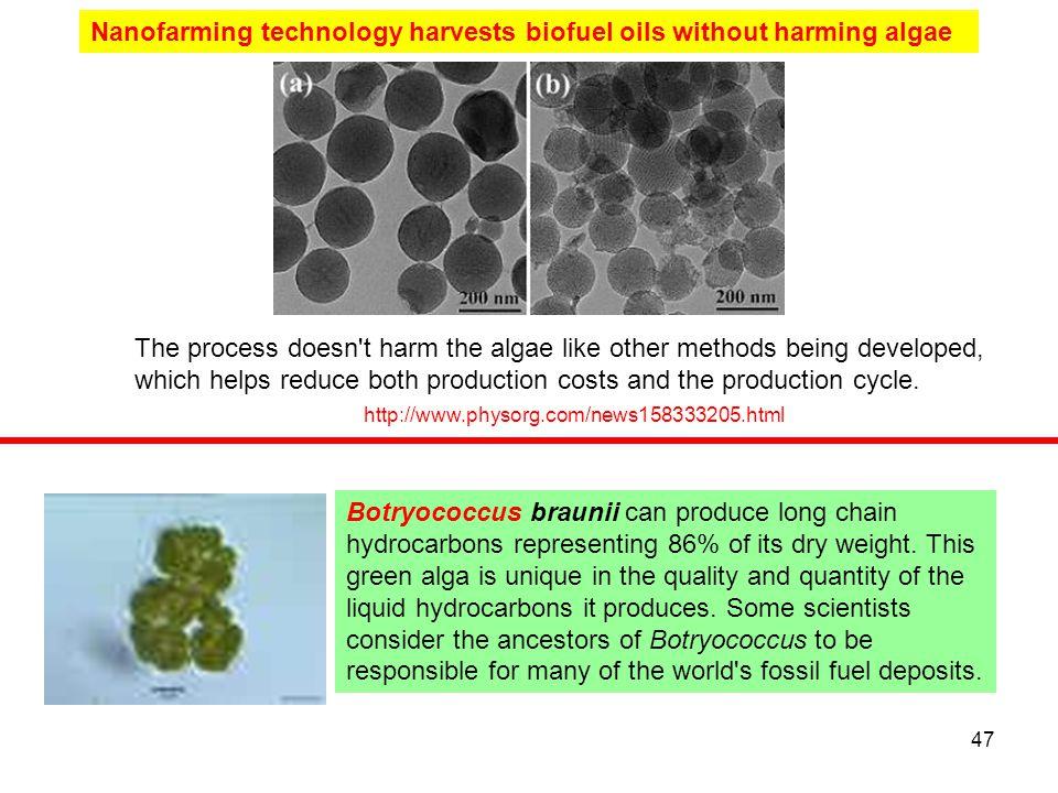 Nanofarming technology harvests biofuel oils without harming algae