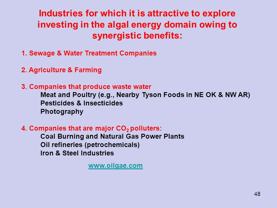 Industries for which it is attractive to explore investing in the algal energy domain owing to synergistic benefits: