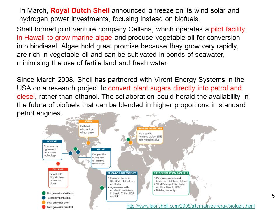 In March, Royal Dutch Shell announced a freeze on its wind solar and hydrogen power investments, focusing instead on biofuels.
