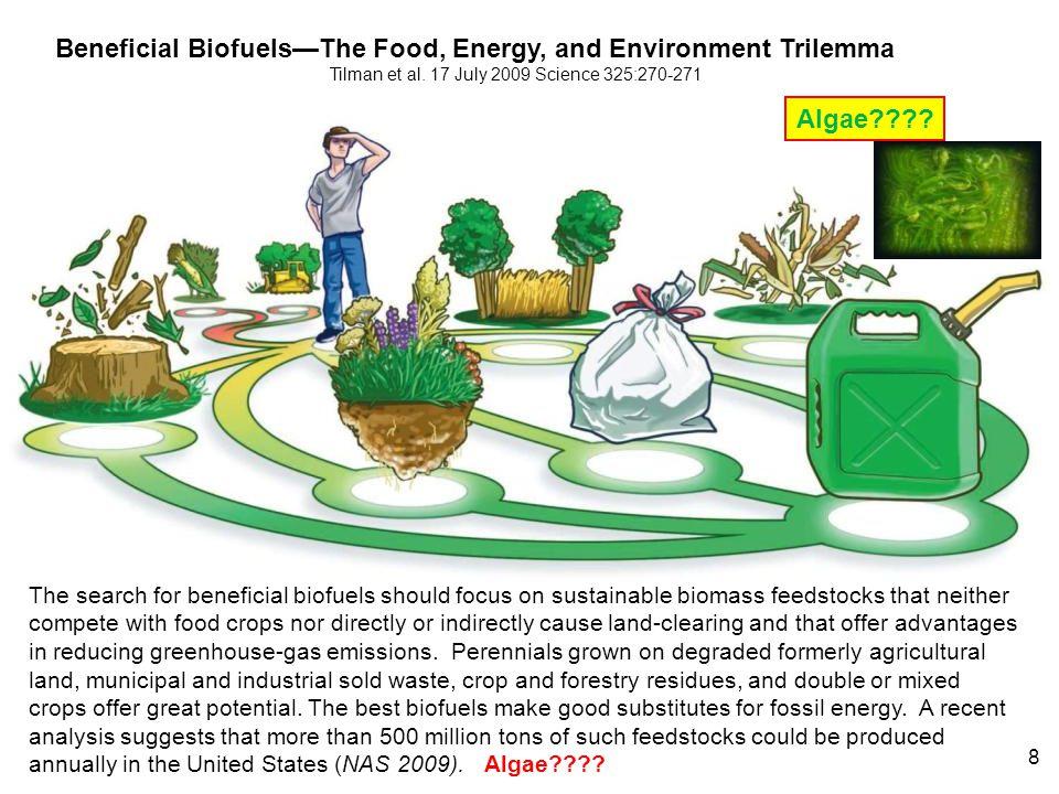 Tilman et al. 17 July 2009 Science 325:270-271