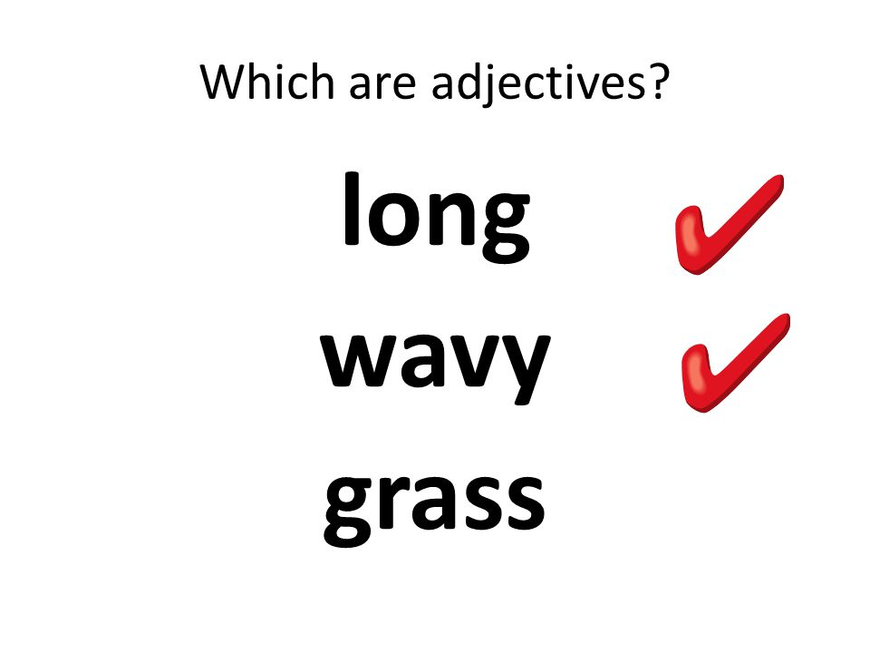 Which are adjectives long wavy grass