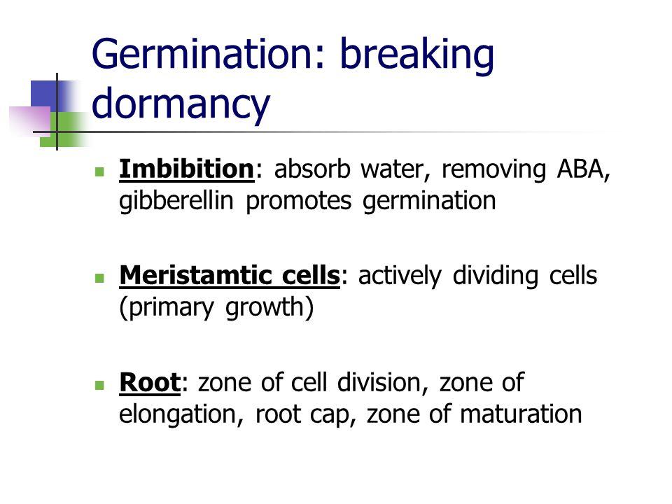 Germination: breaking dormancy