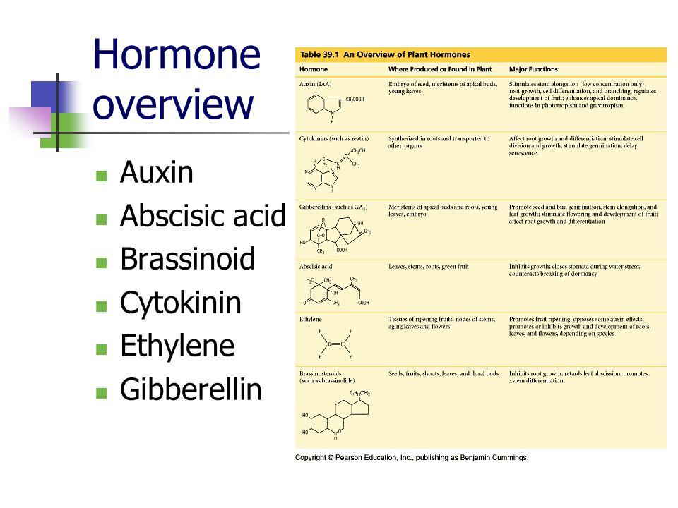 Hormone overview Auxin Abscisic acid Brassinoid Cytokinin Ethylene