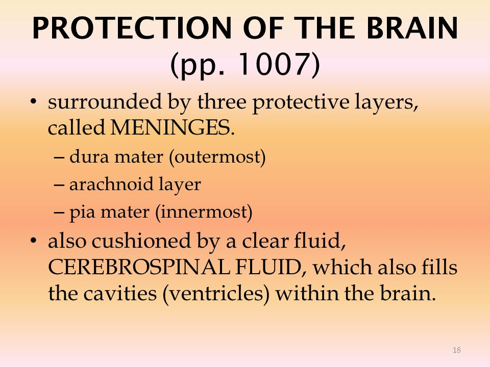 PROTECTION OF THE BRAIN (pp. 1007)