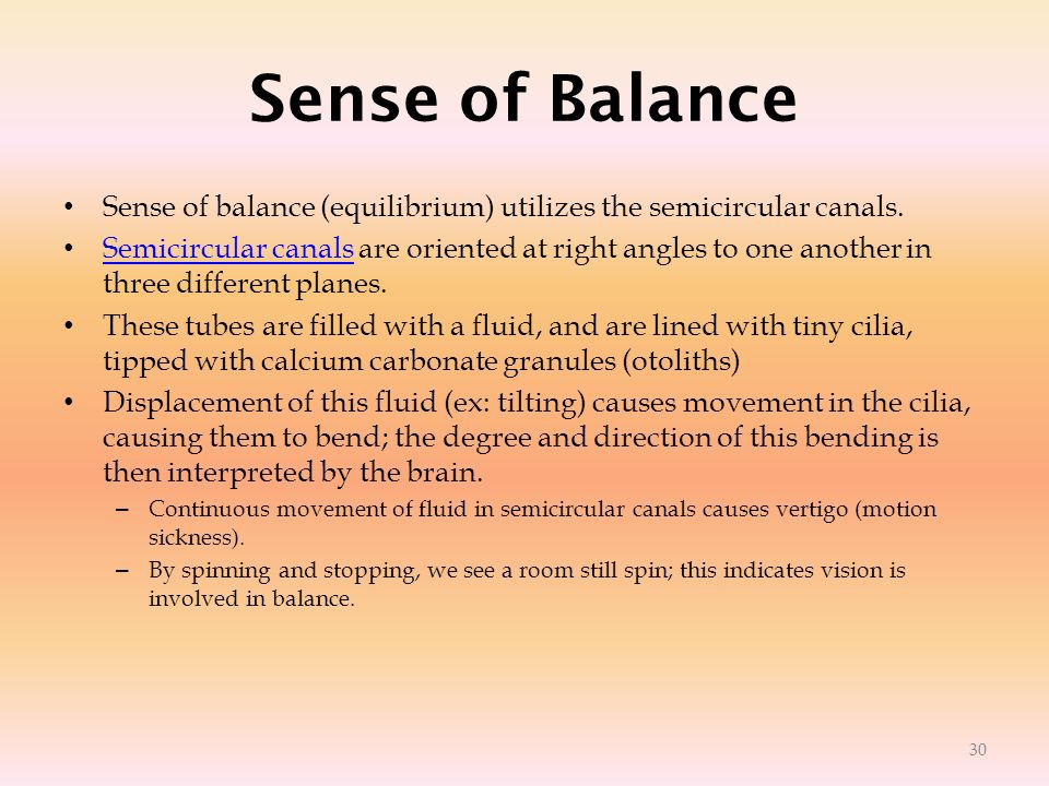 Sense of Balance Sense of balance (equilibrium) utilizes the semicircular canals.