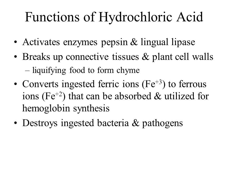 Functions of Hydrochloric Acid