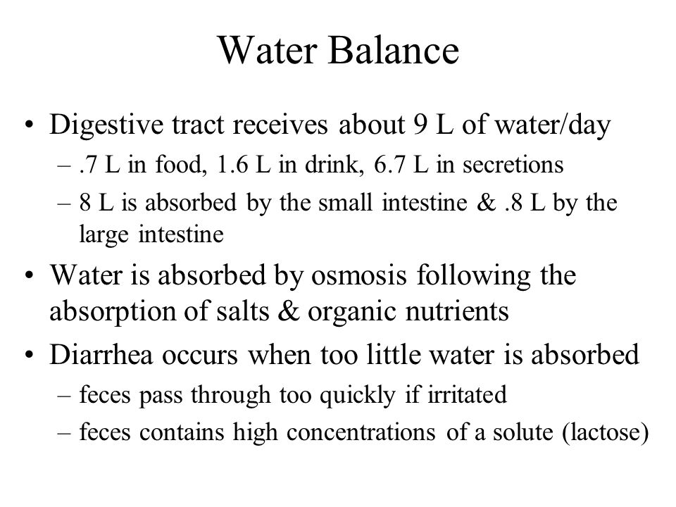 Water Balance Digestive tract receives about 9 L of water/day