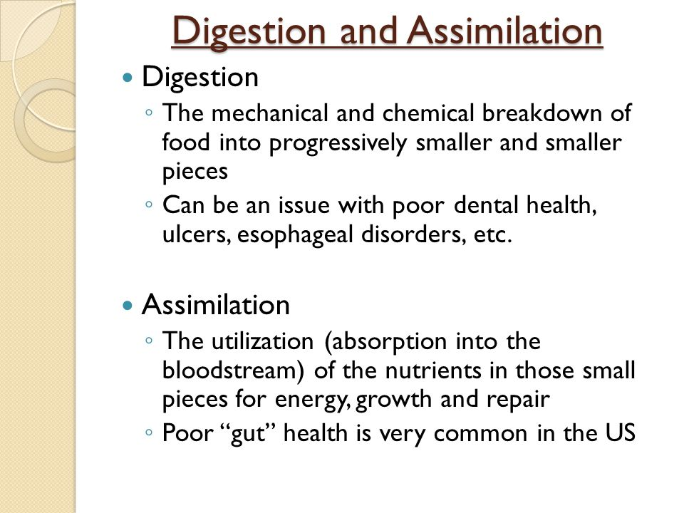 Digestion and Assimilation